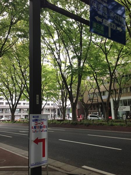定禅寺通り2