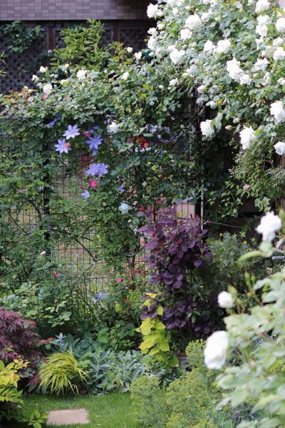 GW@横浜の庭2