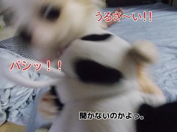 20130929_7.jpg