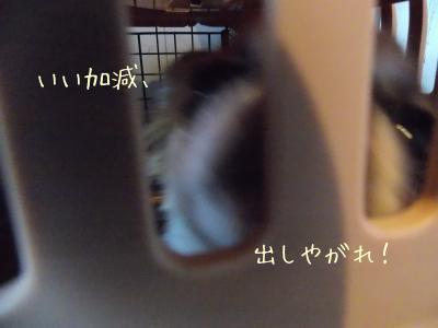 20131023_19.jpg