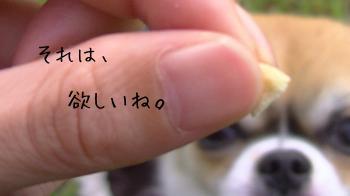 20131122_4.jpg