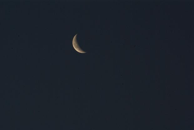 luna_2013.jpg