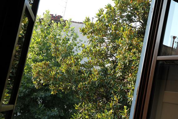 morning_20130730165335834.jpg