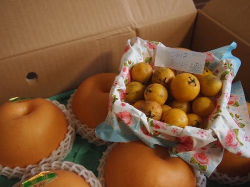 梨とグァバの実