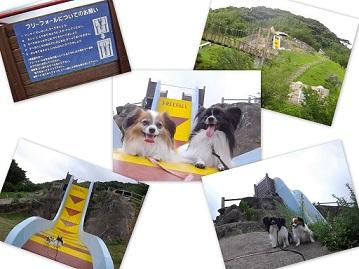 2013-07-06 文化の森公園にて