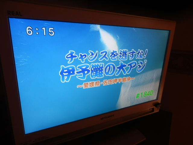 P1014653.jpg