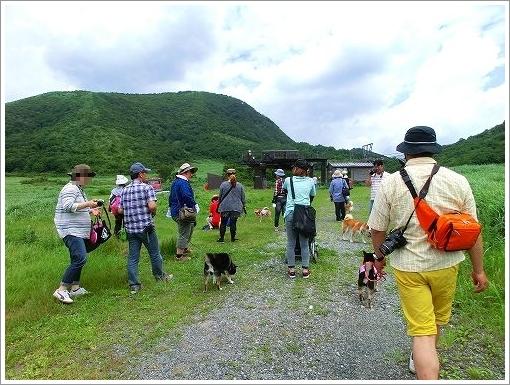 柴柴会in蒜山 (14)