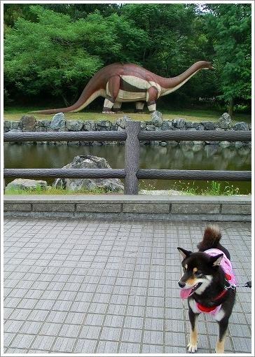 恐竜公園 (5)