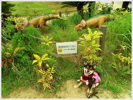 恐竜公園 (9)