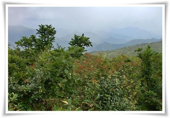 比婆山登山 (14)