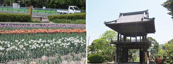b0427-4 根がらみ前水田-一峰院