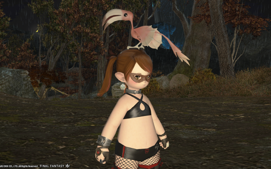 FF14_201411_25.png