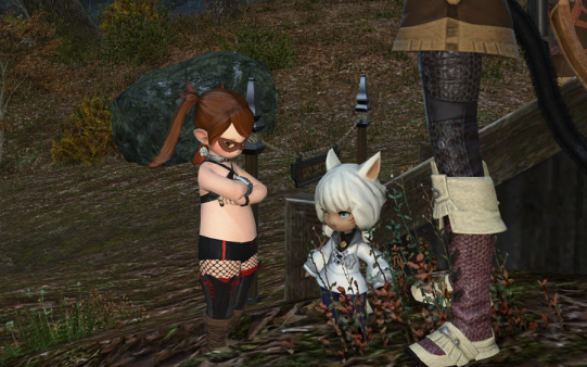FF14_201411_36.png