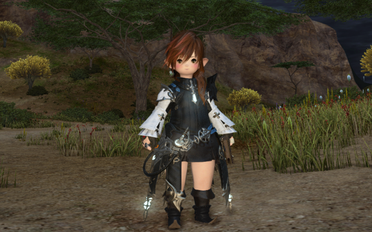 FF14_201411_40.png