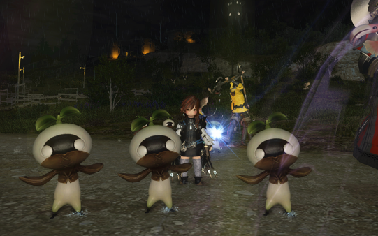 FF14_201411_48.png