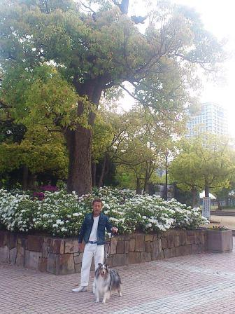 DSC_4749(BOSSと中央公園で)