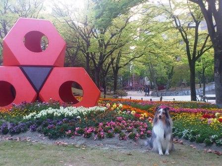 DSC_4762(赤いオブジェとお花)