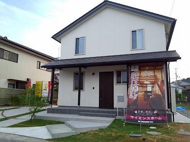 tokushima1.jpg