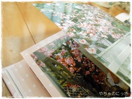 20130512フォトブック桜