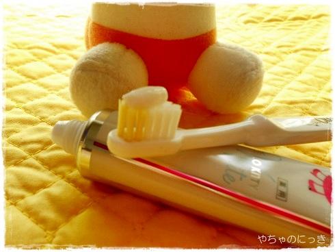 20130903アパガード歯ブラシに