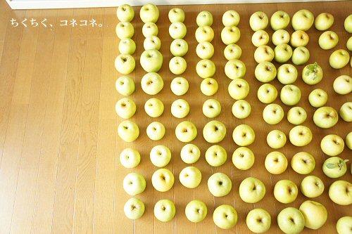 4_201310271558109b7.jpg