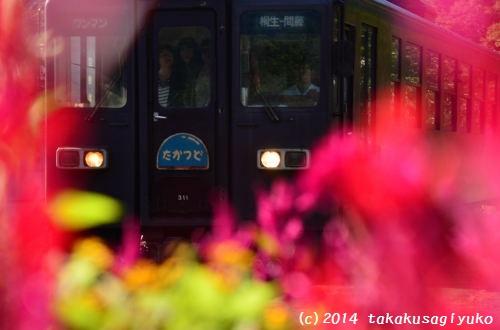 DSC_9214_01.jpg