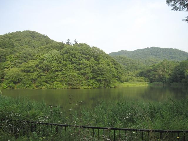 suzumi6.jpg