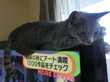 1509しがみつく (4)