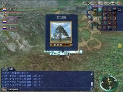 20131118005337_発見物発見_正二品松_3