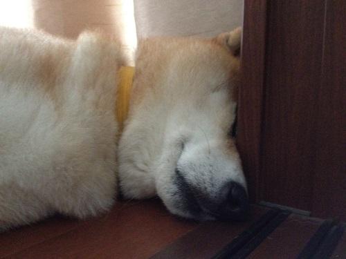 hard-to-sleep-2.jpg