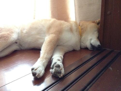 hard-to-sleep.jpg