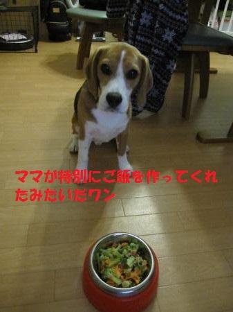 IMG_9766_convert_20130601205714.jpg