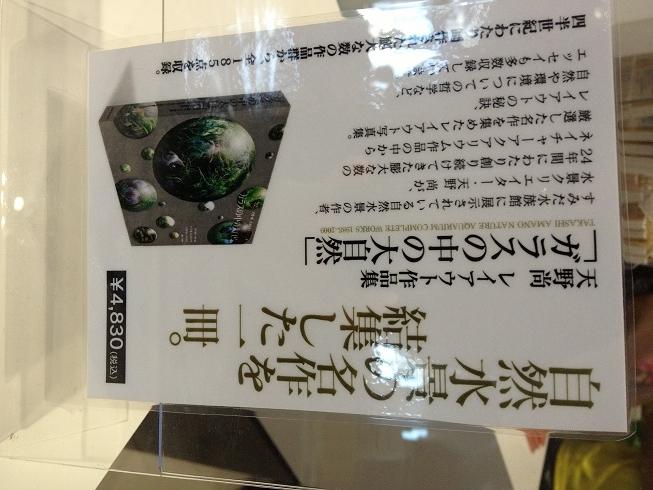 墨田水族館8