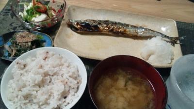 11月19日夕食 (400x225)