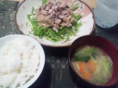 ブタシャブサラダ夕食 (400x300)