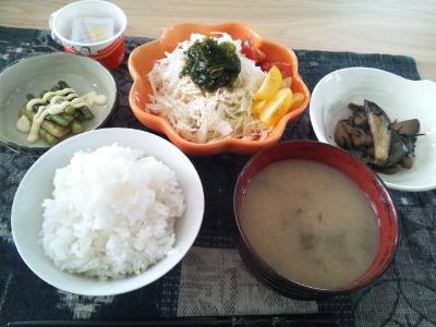 野菜だらけw (400x300)