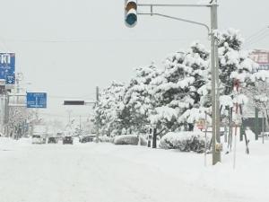 日中の吹雪12月15日 (300x225)