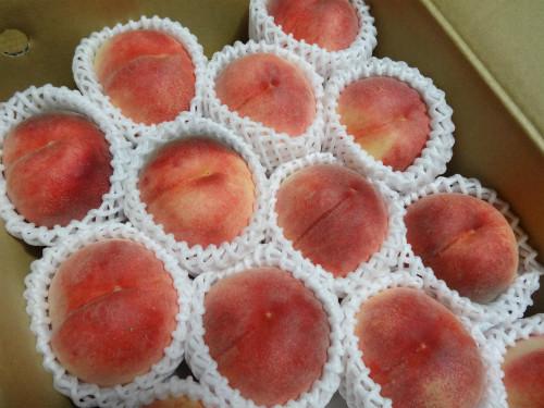 いただき物の桃
