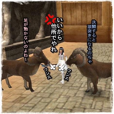 TODOSS_20130807_003346-1-05.jpg