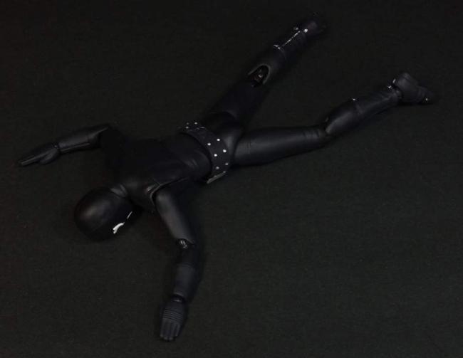 仮面ライダーZX15