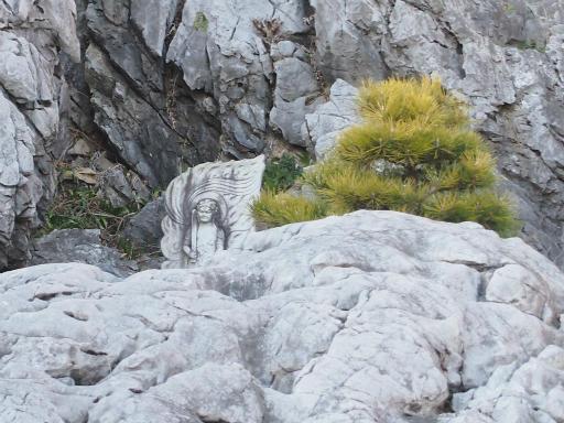20140102・高麗神社1-11