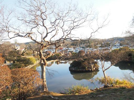 20140102・高麗神社1-16