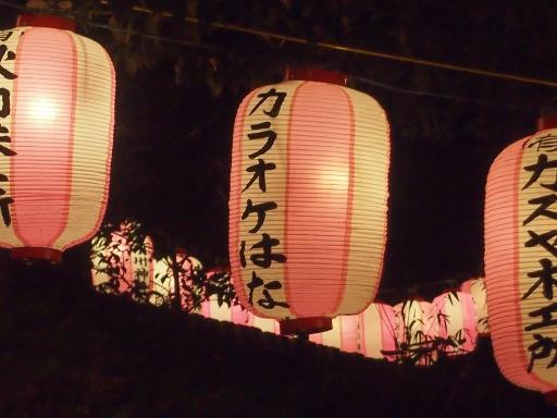 20140101・地元初詣ネオン12