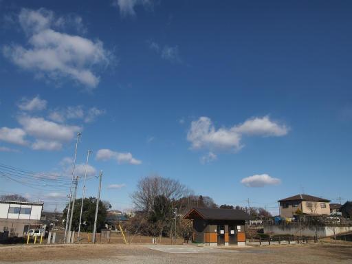 20140119・緑森空06・八幡湿地