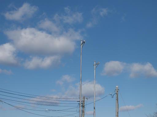 20140119・緑森空09・八幡湿地