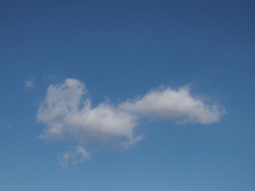 20140119・緑森空07・八幡湿地