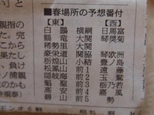 20140125・相撲3