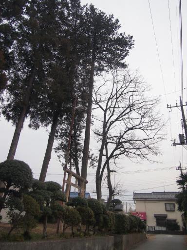 20140125・散歩16