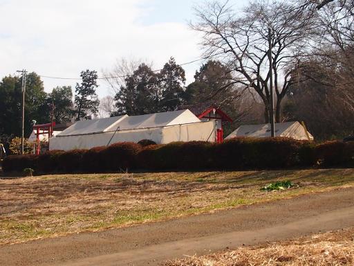 20140202・自然観察会13・都稲荷は節分準備