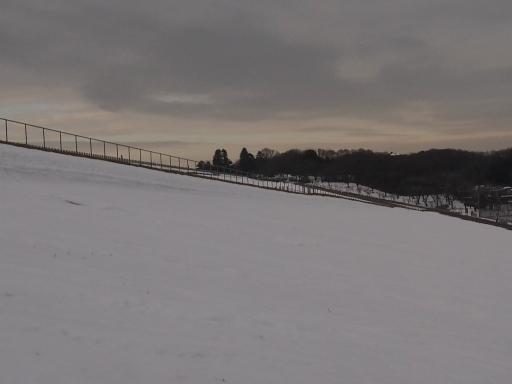 20140211・雪散歩空06・狭山湖